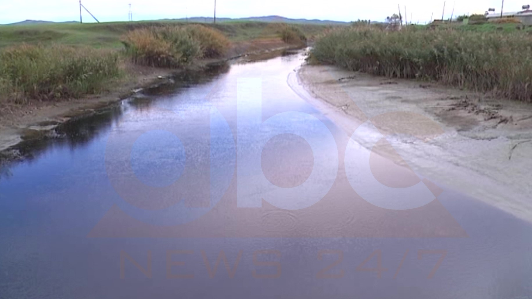 Katastrofë në emisarin e Myzeqesë, peshku në sipërfaqe