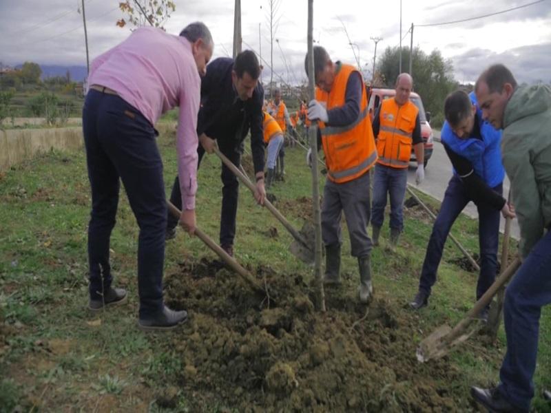 Bashkia e Tiranës vijon mbjelljen e 1 mijë pemëve të reja për Pyllin Orbital