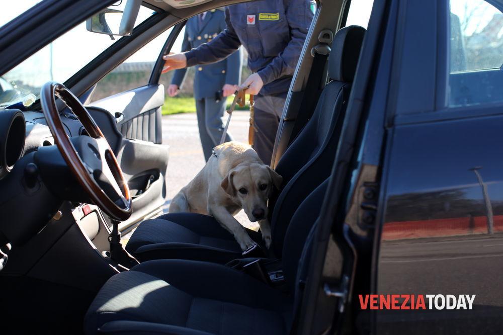 Itali, arrestohen 9 shqiptarë nga Elbasani për trafik droge