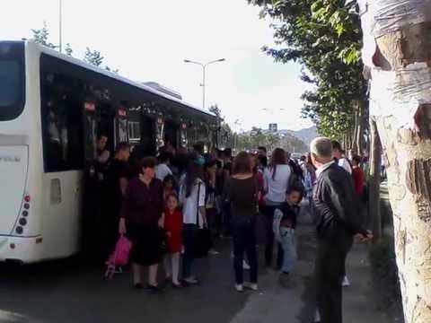 """Vdes 53 vjeçarja në autobusin e linjës """"Tirana e Re"""""""