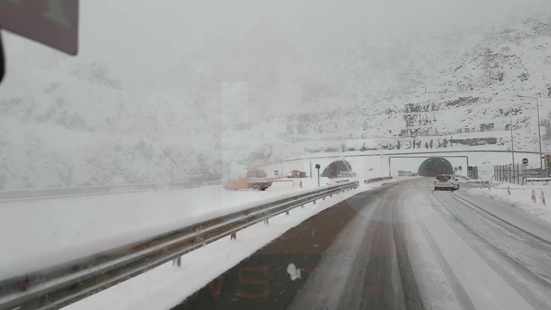 Nis bora në pjesën më të madhe të territorit