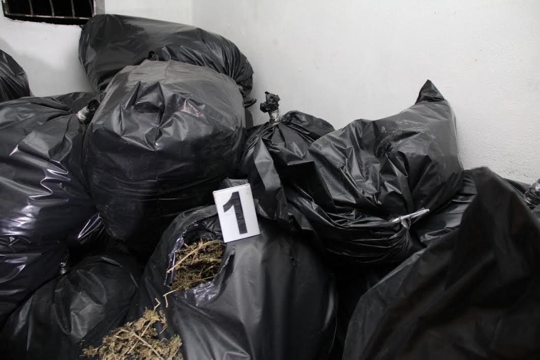 Zbulohen 102 kg kanabis në Memaliaj, arrestohen tre persona