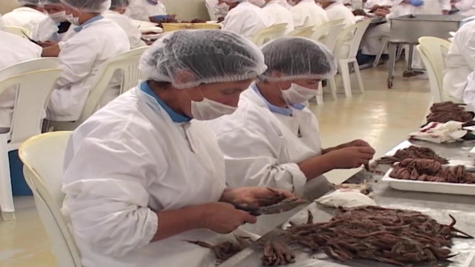 Prodhuesit: Hapja e tregjeve me rajonin na falimenton brenda gjashtë muajsh