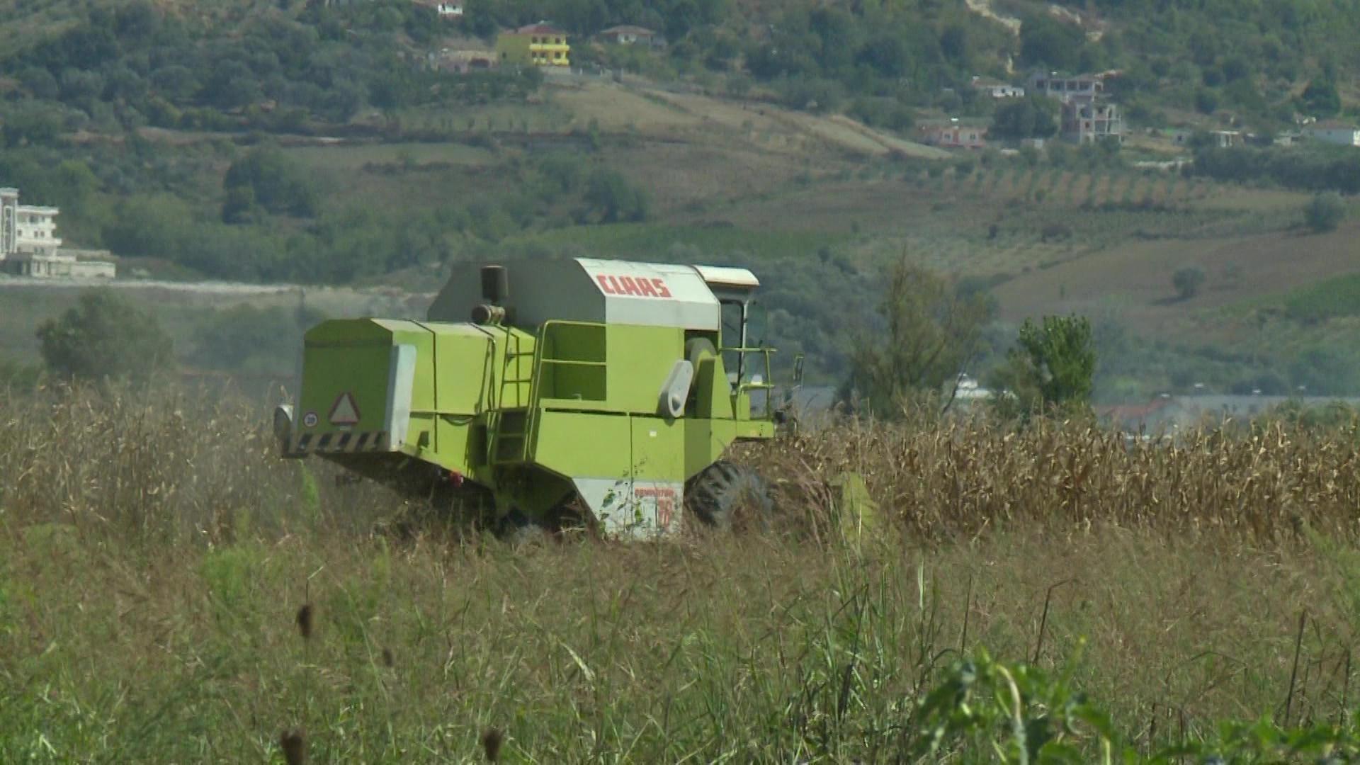 BE dritë jeshile bujqësisë shqiptare/Peleshi: 94 milionë euro për fermerët