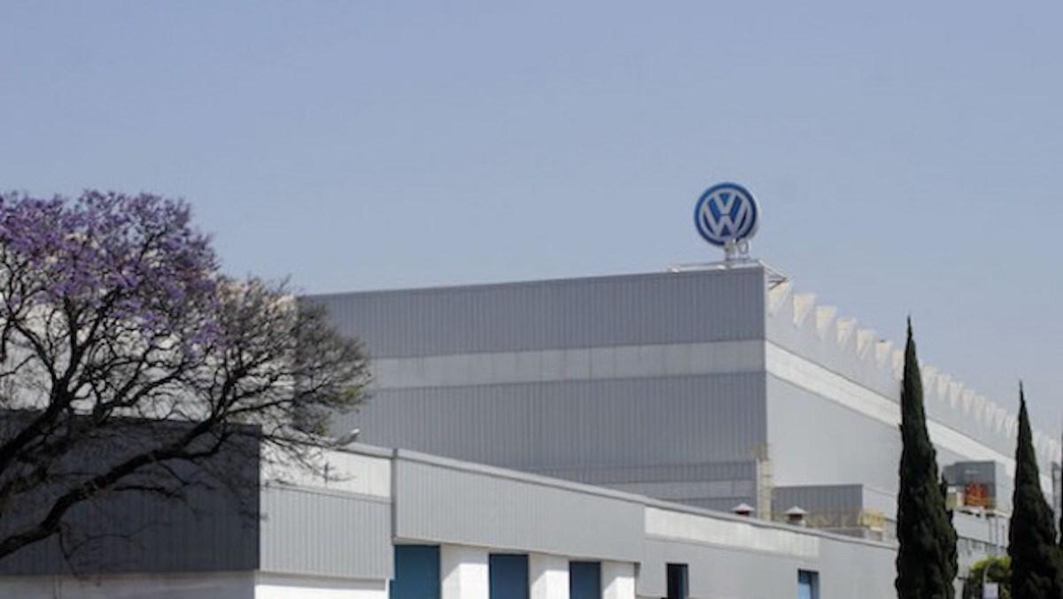 """Përdorimi i kafshëve si kavie, """"Volkswagen"""" shkarkon kryemenaxherin"""