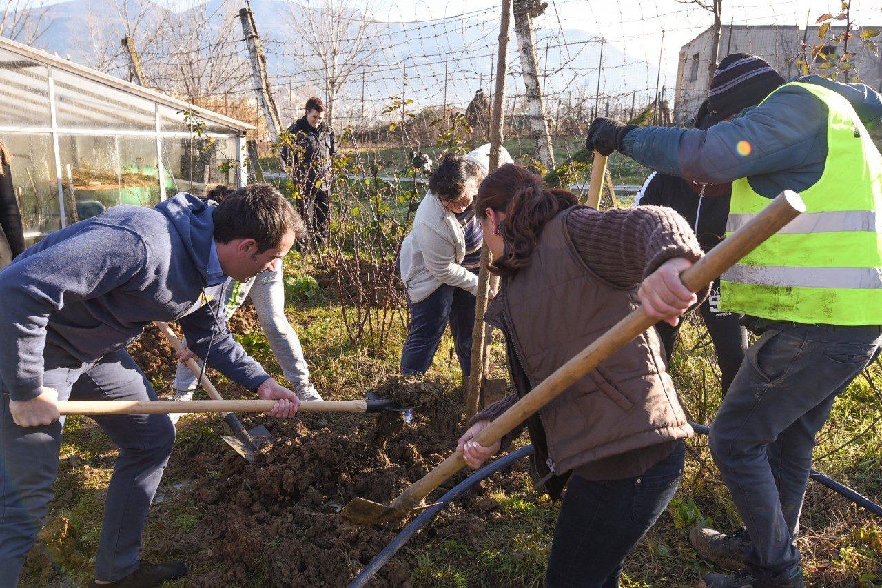 thumbnail_Veliaj-gjte-mbjelljes-se-pemeve-ne-Institucionin-e-Vuajtjes-se-Denimit-te-Grave-ne-Tirane-1-1280x853.jpg
