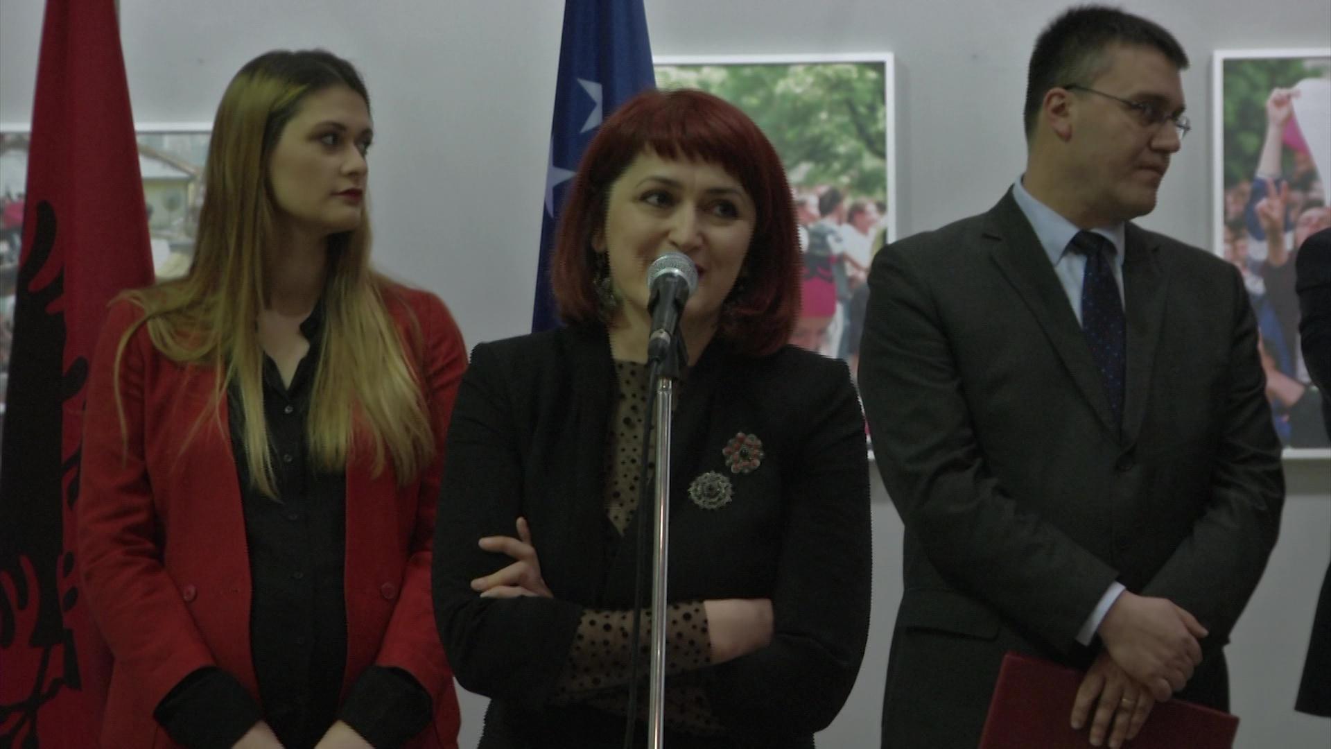 10 vite Kosovë e pavarur në ekspozitën e Eliza Hoxhës