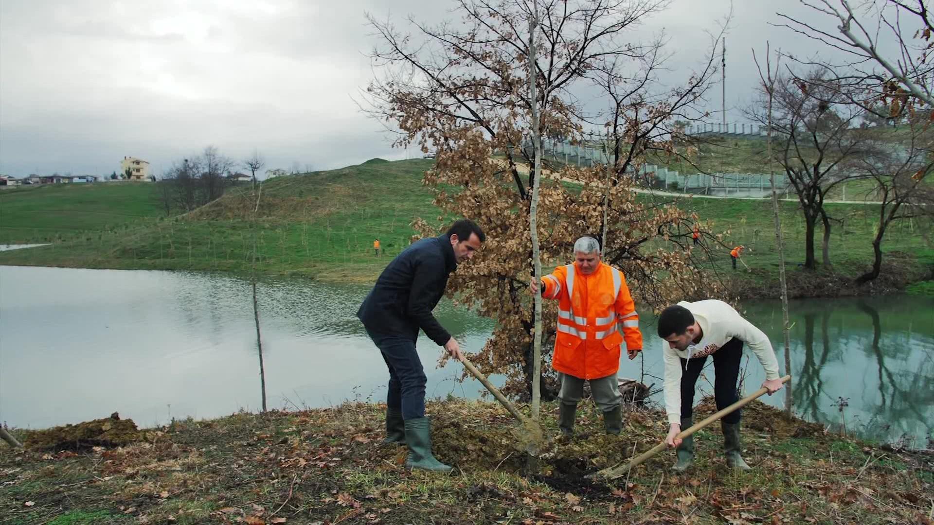 200 pemë të reja në liqenin e Farkës
