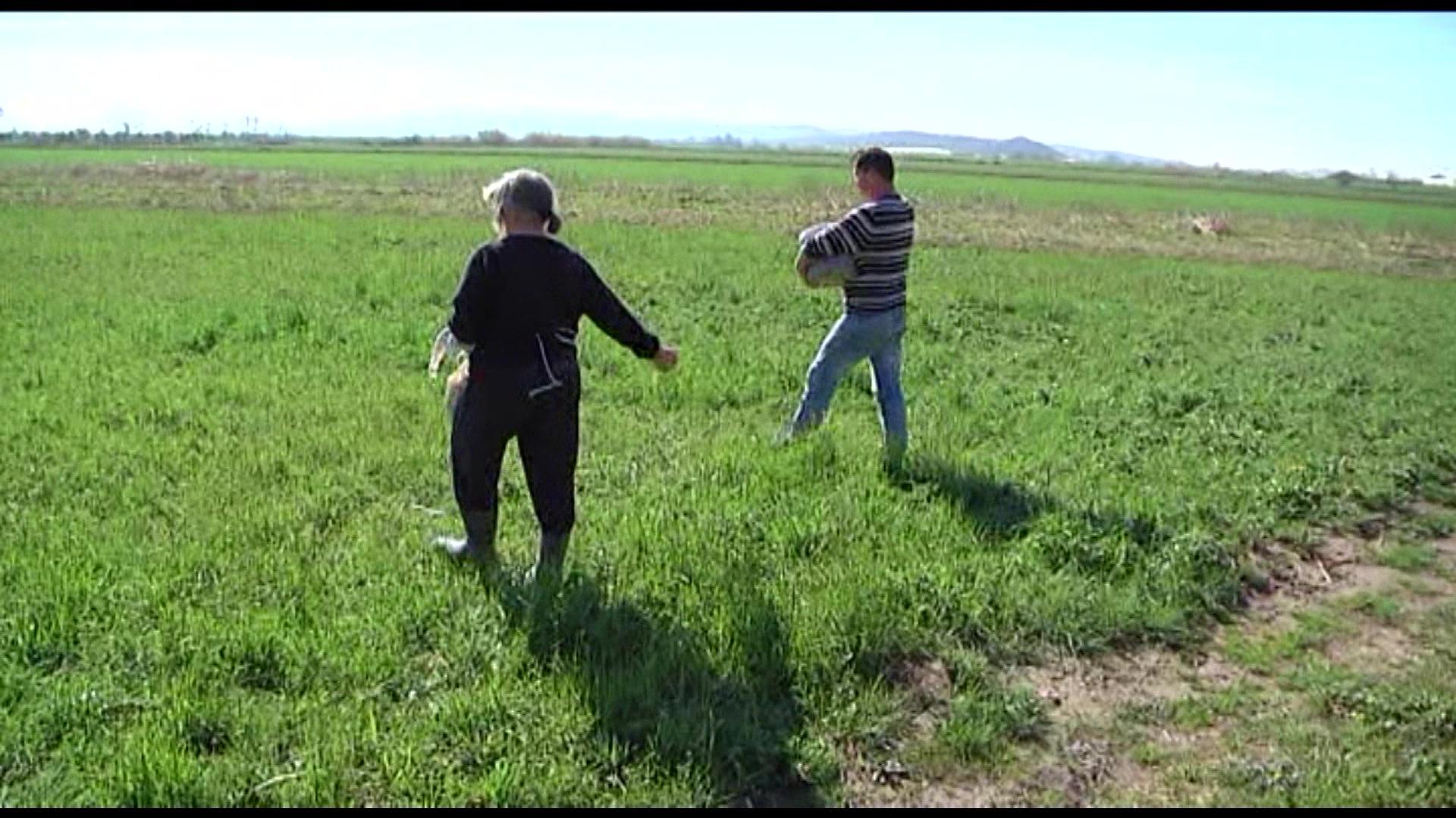 Lushnjë, fermerët s'kanë informacion se si mund të marrin mbështetje nga shteti