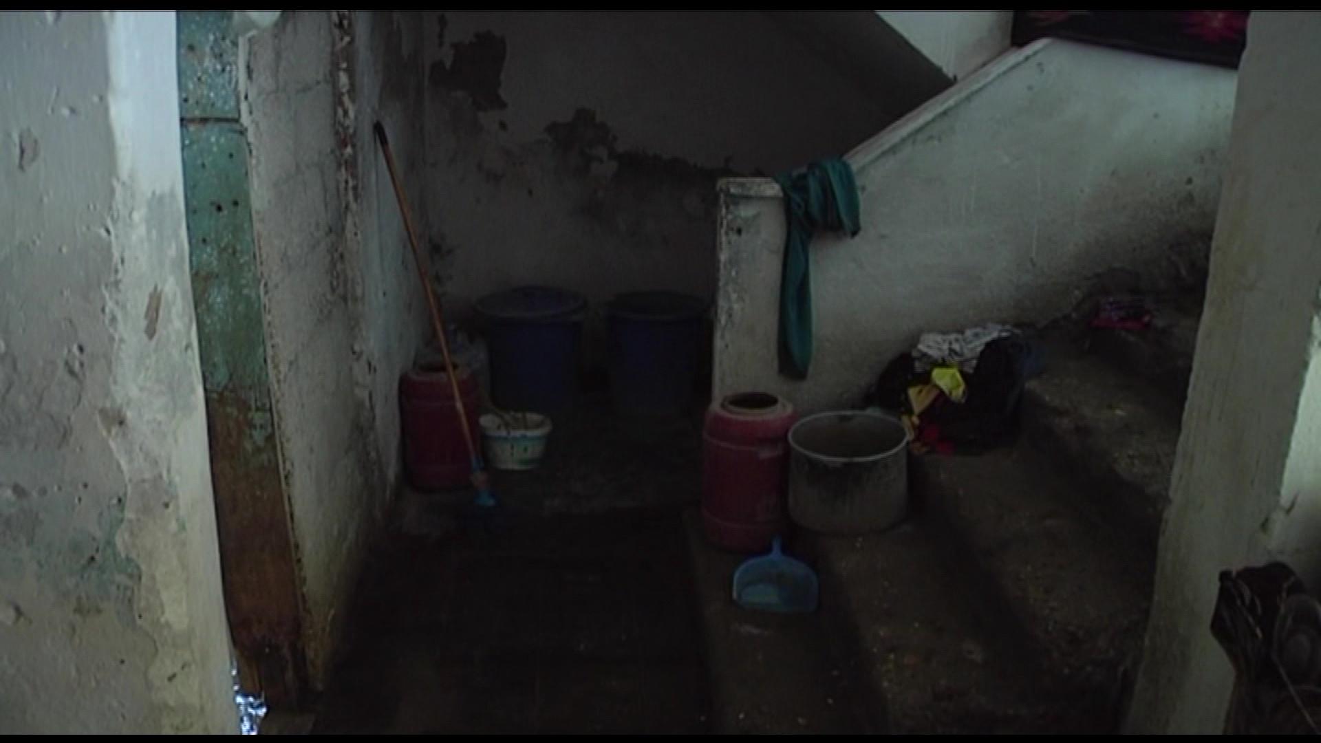 Në Bedat të Divjakës, aty ku banorët mbjellin perime e vjelin kripë