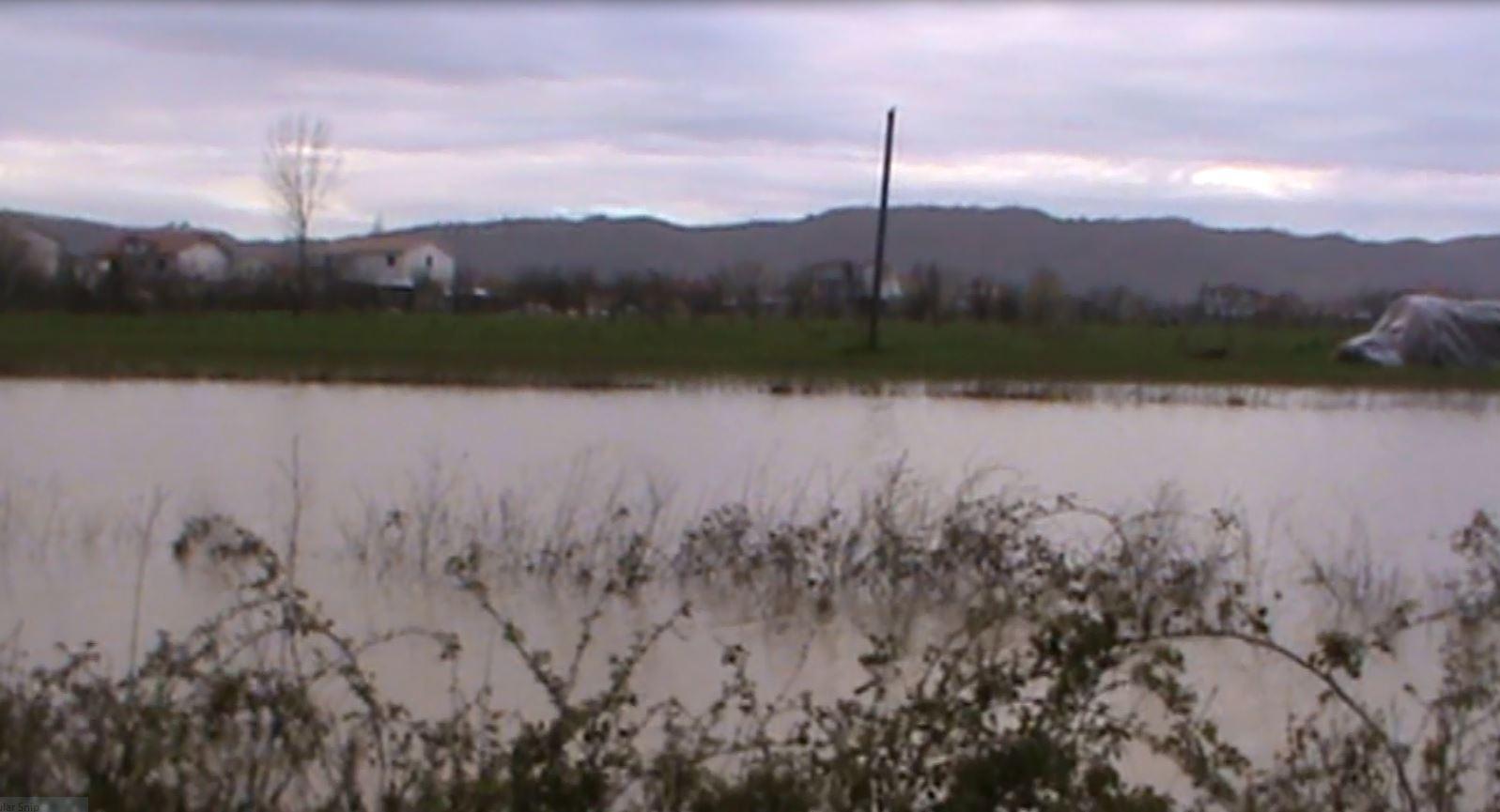 Reshjet në zonën e Fushë-Krujës/Lumi Ishëm del nga shtrati