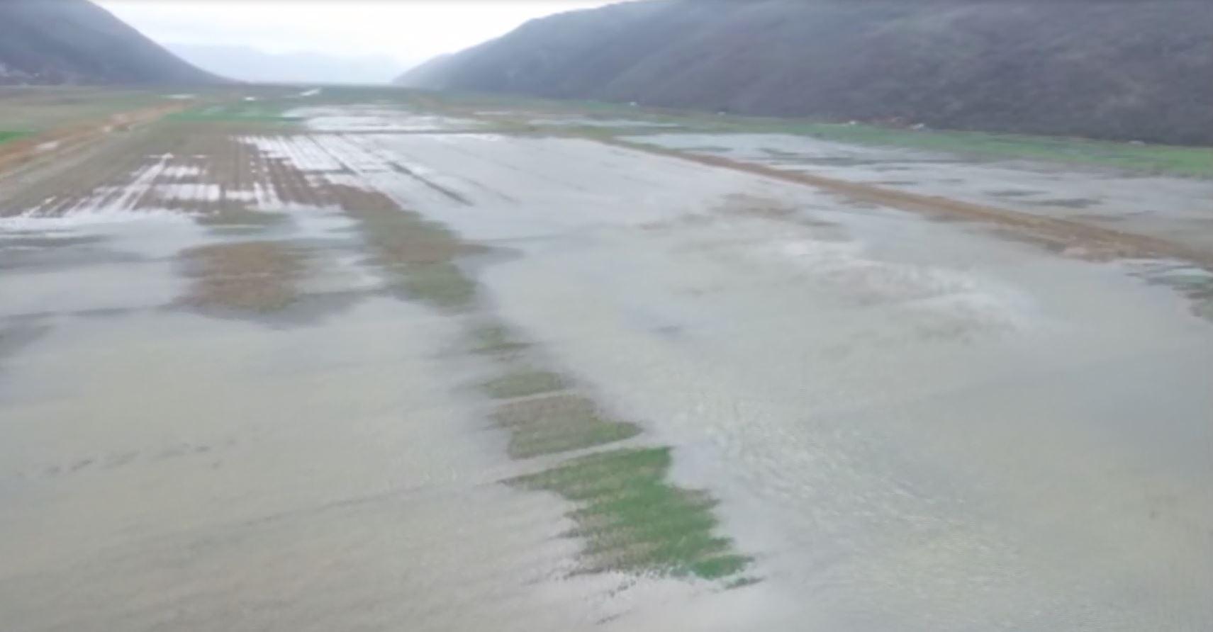 Përmbytjet në Torovicë, banorët pësojnë dëme të mëdha