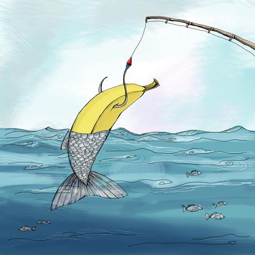 """Fotolajm/ """"Peshku i madh me banane"""""""