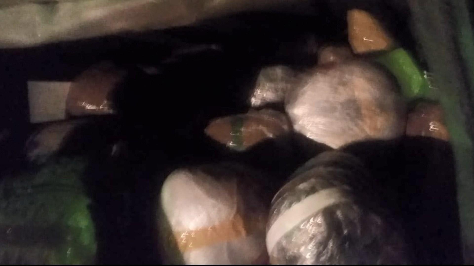 Droga në Karaburun/ Policia: U gjetën 769 kg kanabis e 59 litra benzinë