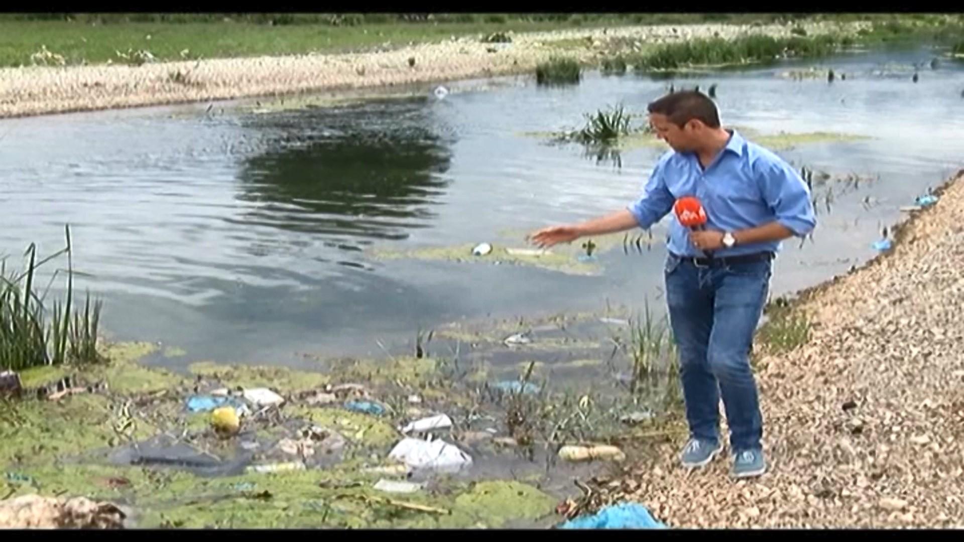 Shkodër, mbetjet nga vija e Vrakës depozitohen në liqen