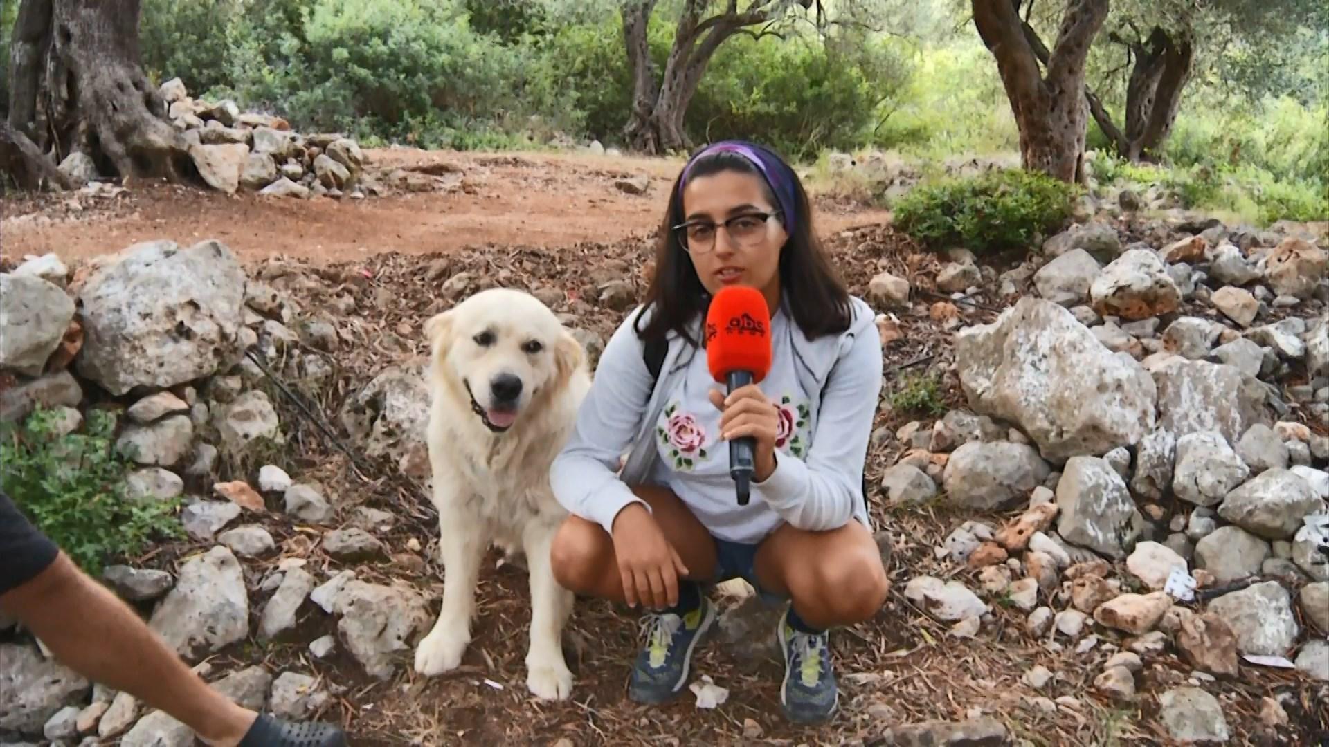 Qeni Otis udhëheq Edicionin Veror në majë të malit