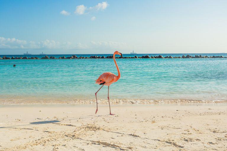 10 plazhet më të bukur të botës