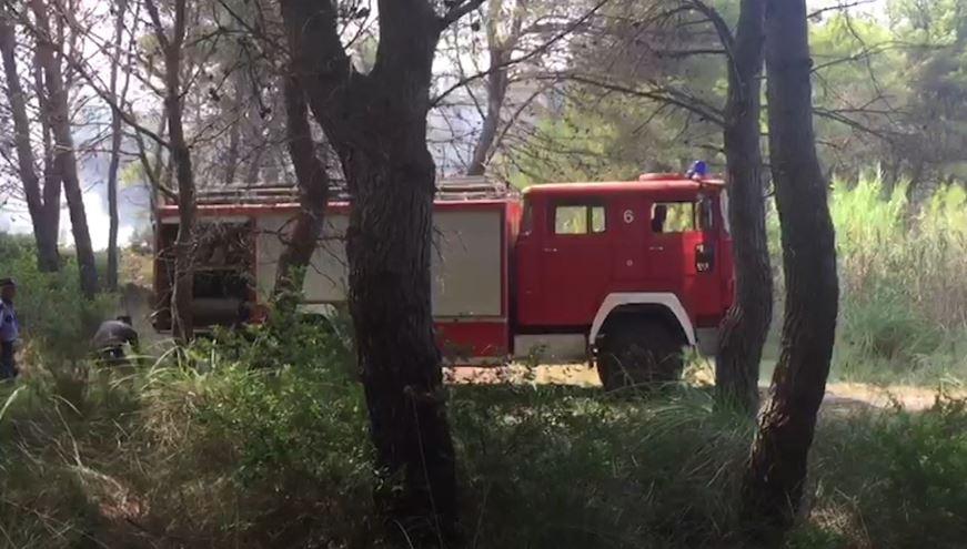 Vihet nën kontroll zjarri në pyllin e Semanit