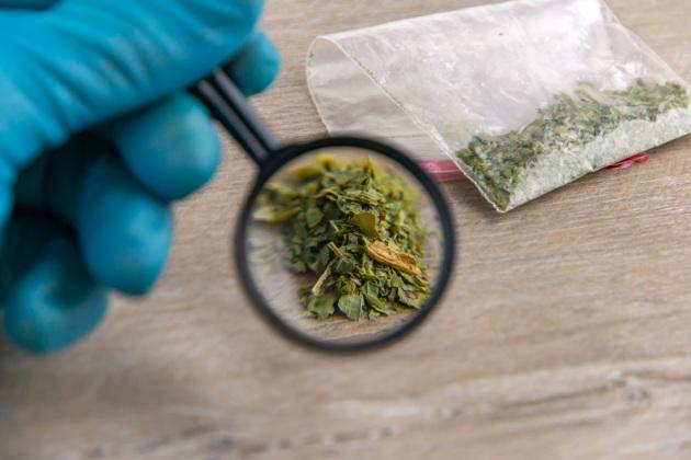 cannabis-sintetica.630x360.jpg