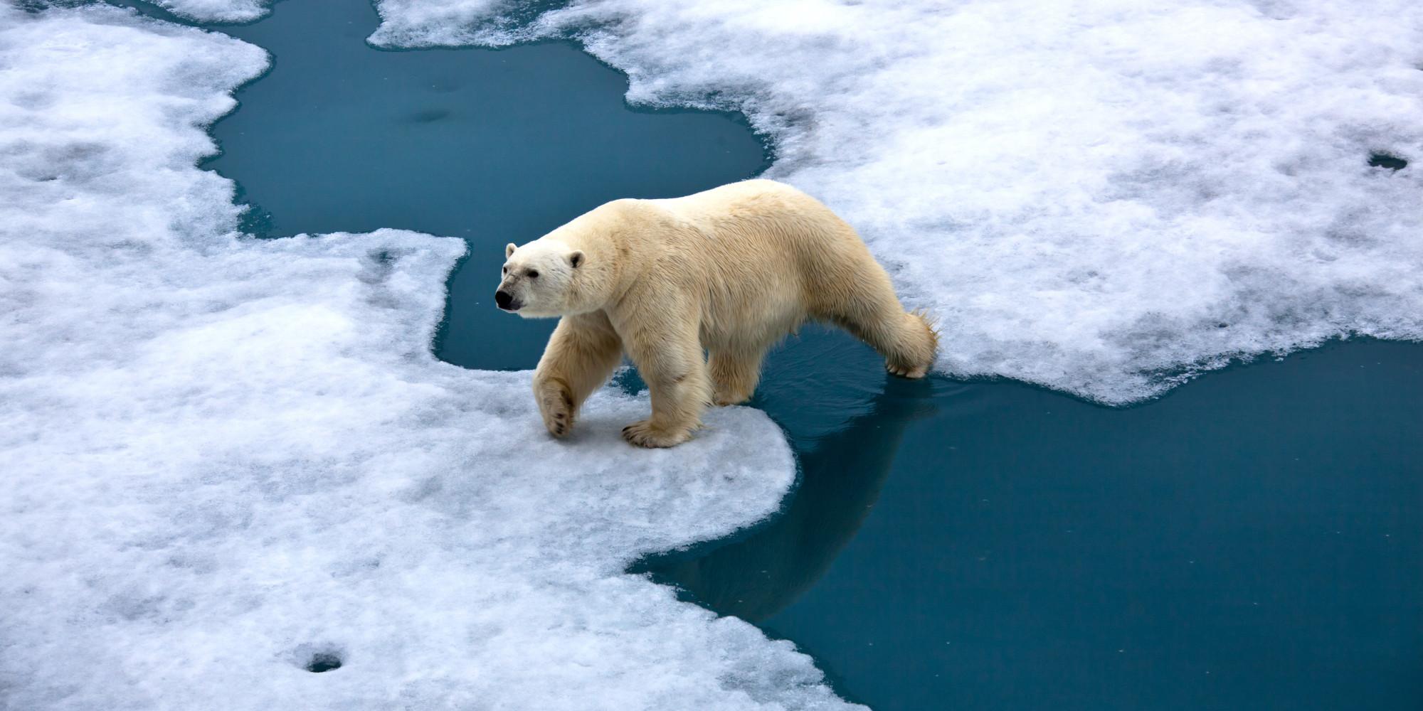 Ndryshimi i klimës, studiuesit ngrenë alarmin