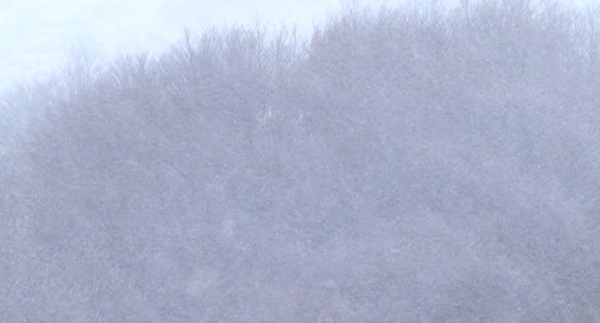 Reshjet e borës në Korçë, ARRSH apel për përdorim të zinxhirëve
