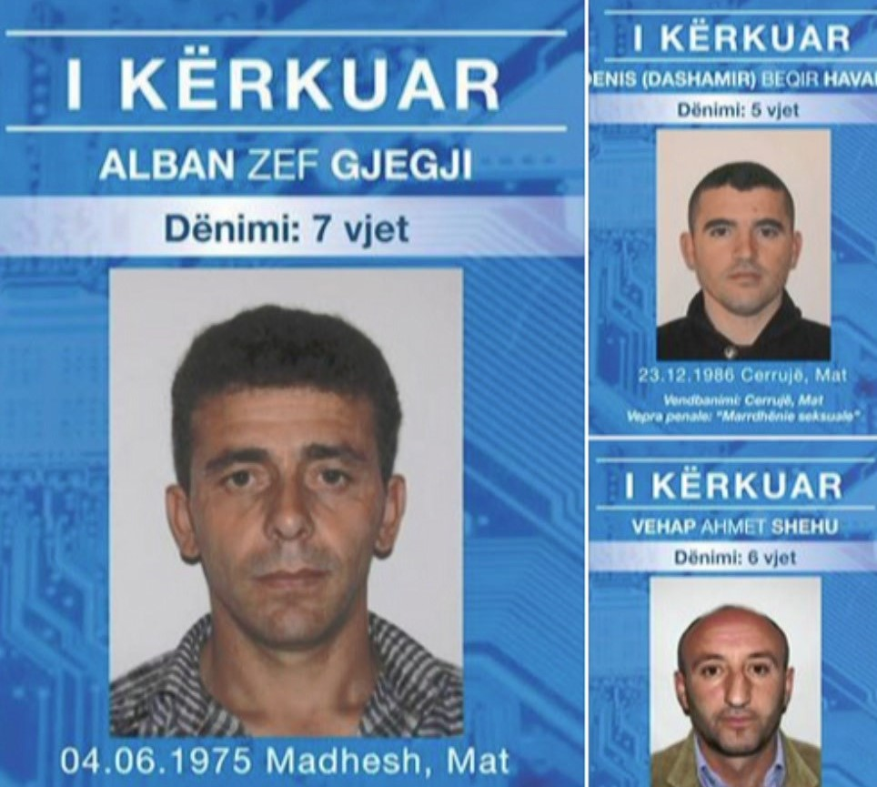 Dibër, policia publikon emrat e 22 personave të shpallur në kërkim