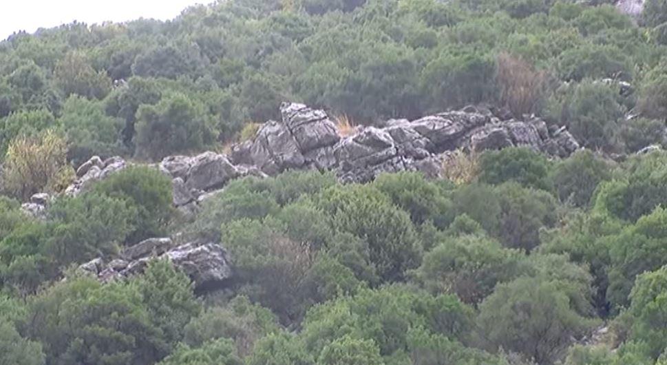Vijon rënia e gurëve pranë banesave në Torovicë