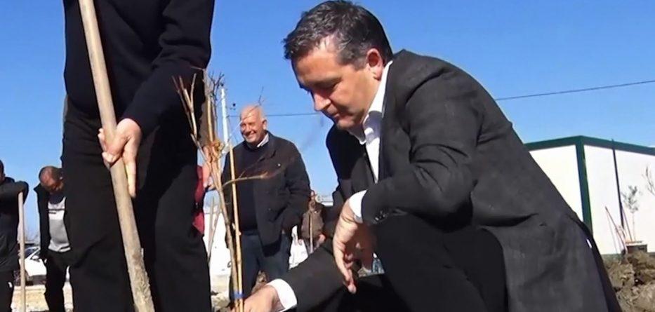 """Ministri i Mjedisit Klosi prezanton fushatën e re """"100 ditët e pemëve"""""""