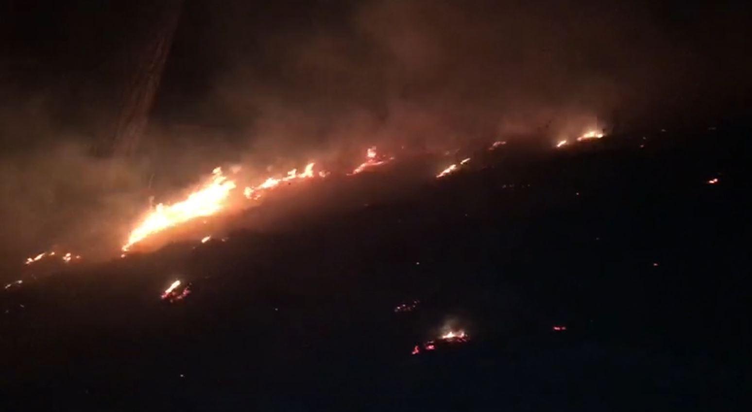 Zjarr në kodrat e Krapsit në Fier, era e fuqishme përhap flakët