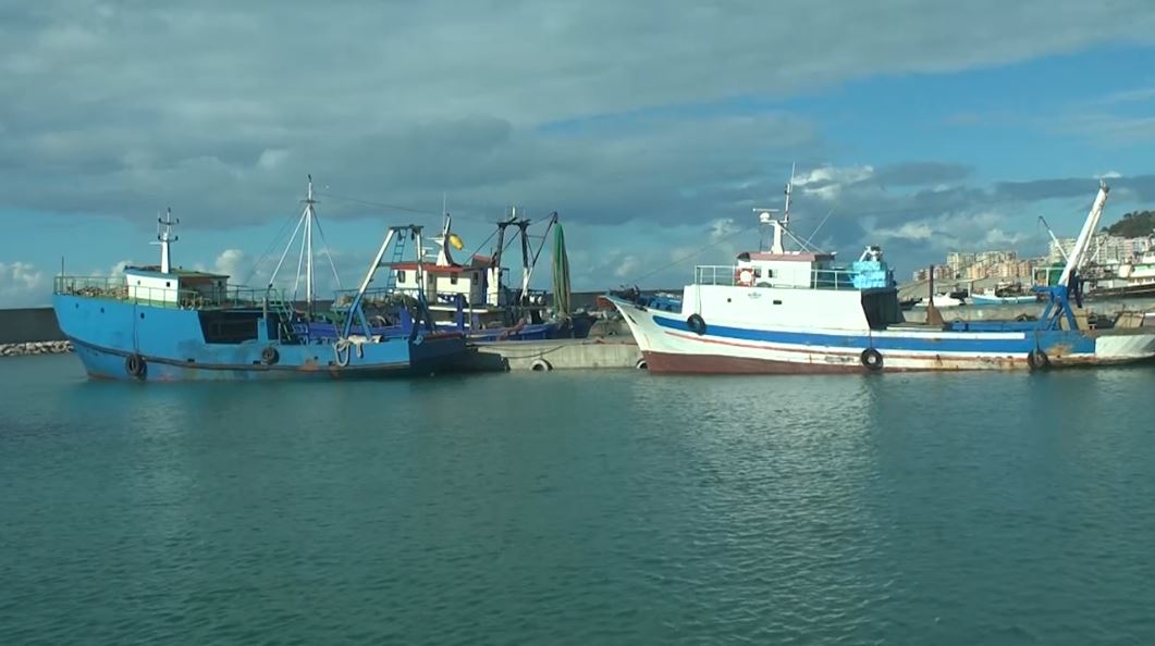 Peshkatarët marrin portin e tyre të ri