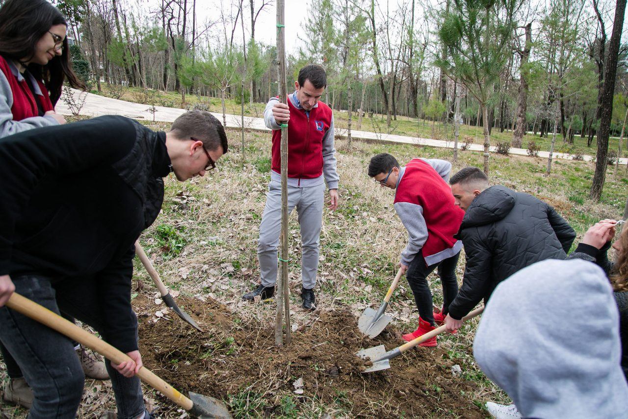 Veliaj-gjate-mbjelljes-me-pemeve-me-nxenesit-e-shkollave-1-1280x854.jpg
