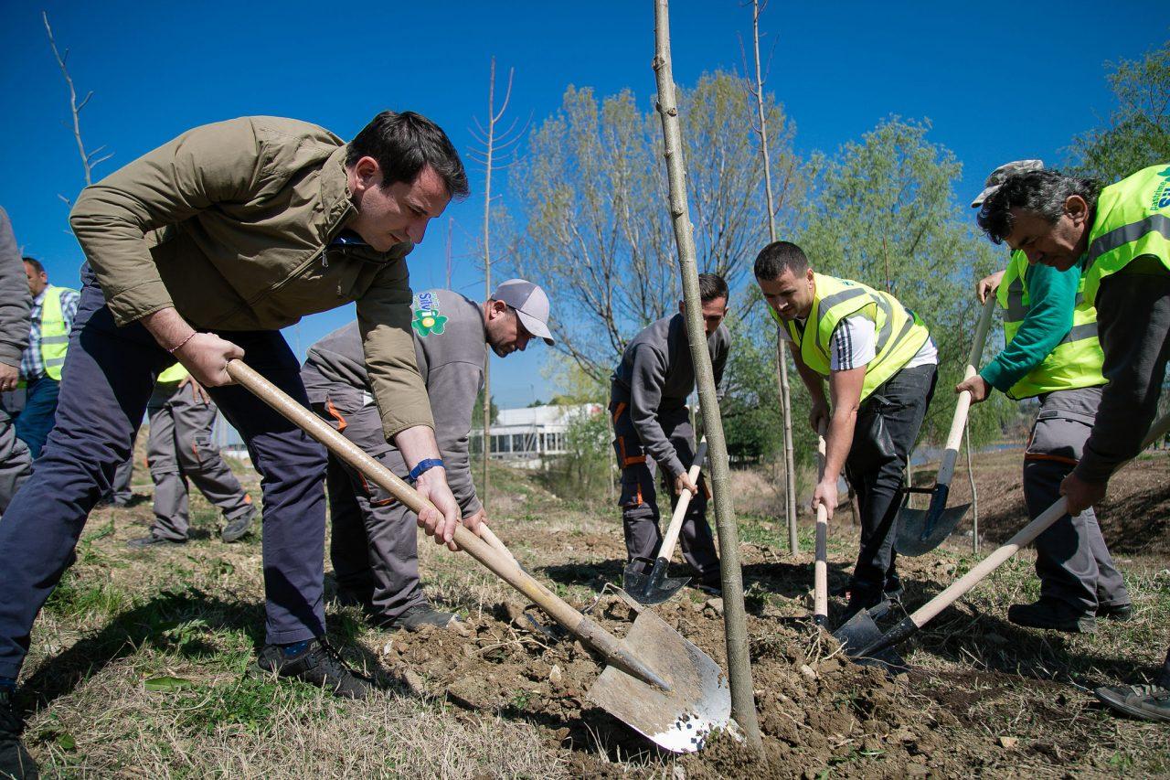 Veliaj-gjate-mbjelljes-se-pemeve-te-reja-me-bizneset-3-1280x853.jpg