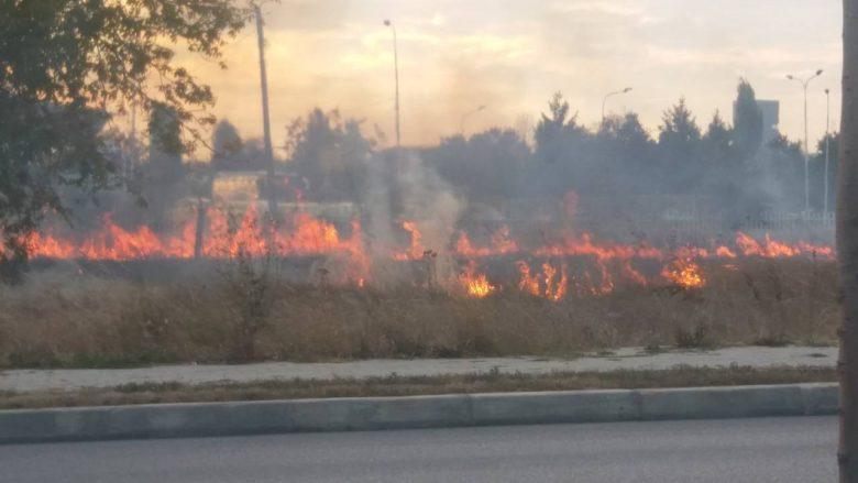 zjarr-1.jpg