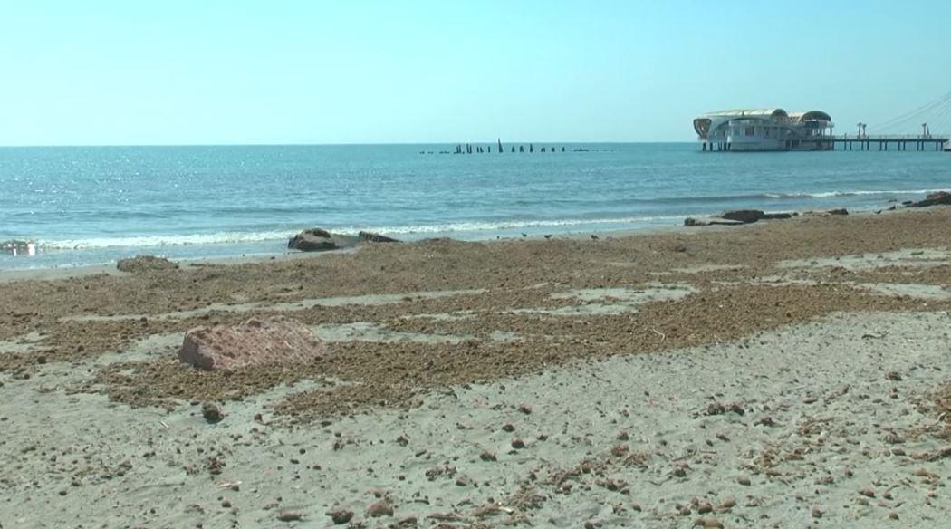 Gjendet e pajetë e moshuara në breg të detit
