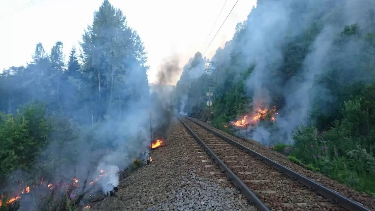 Zjarret shkrumbojnë pyjet e Norvegjisë