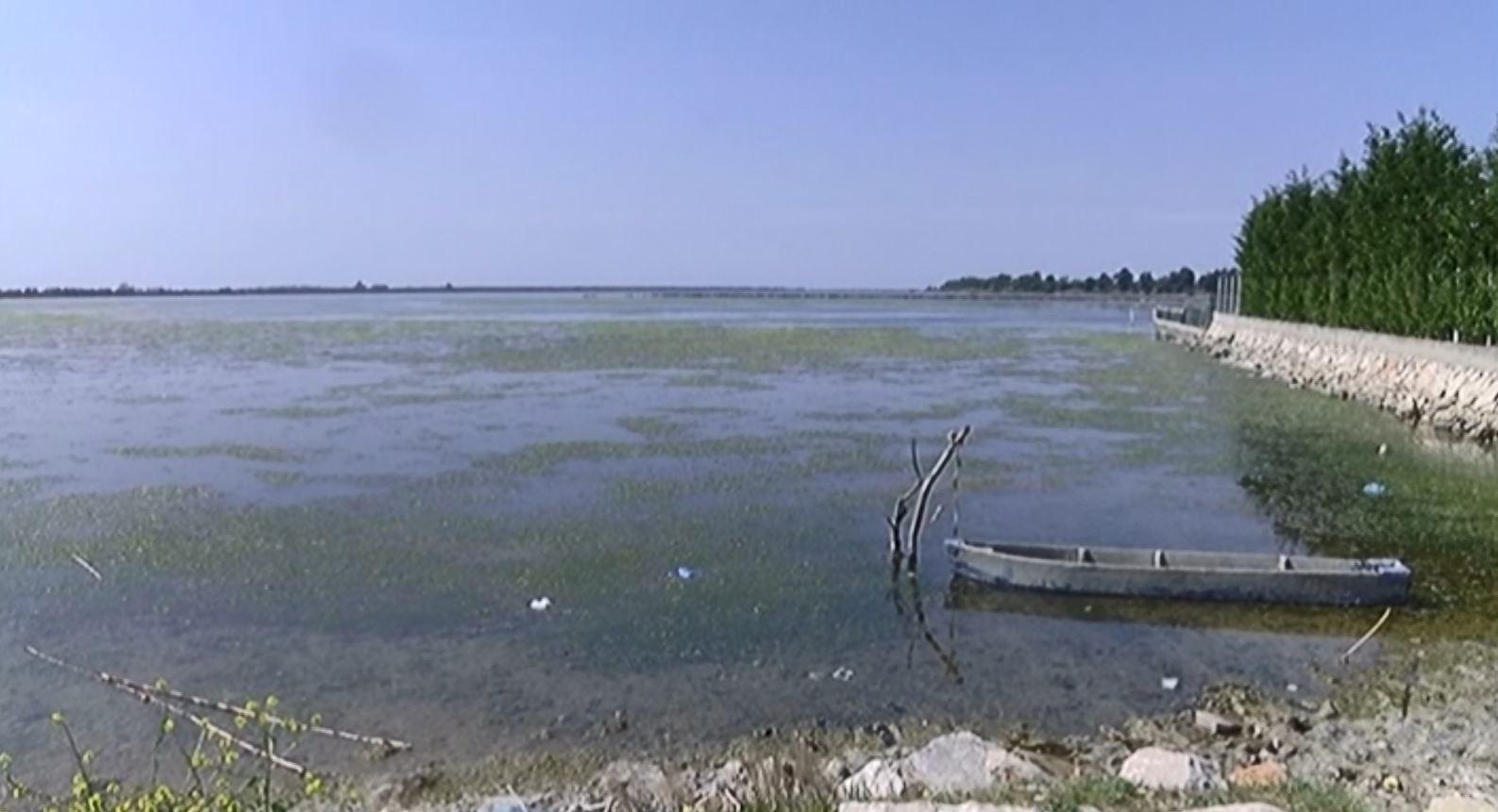 Ndotet Laguna në Kune të Lezhës, specialistët e mjedisit në alarm