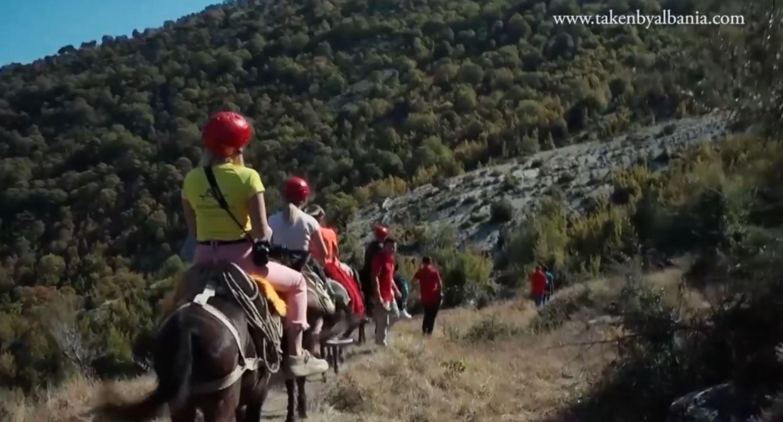 Nxitoni të zbuloni fermat autentike në Shqipëri