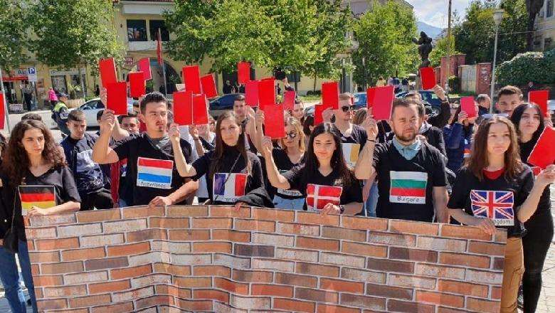 LRI dhe FRPD në protestë, të rinjtë veshin bluza me flamujt e shteteve anëtare të BE