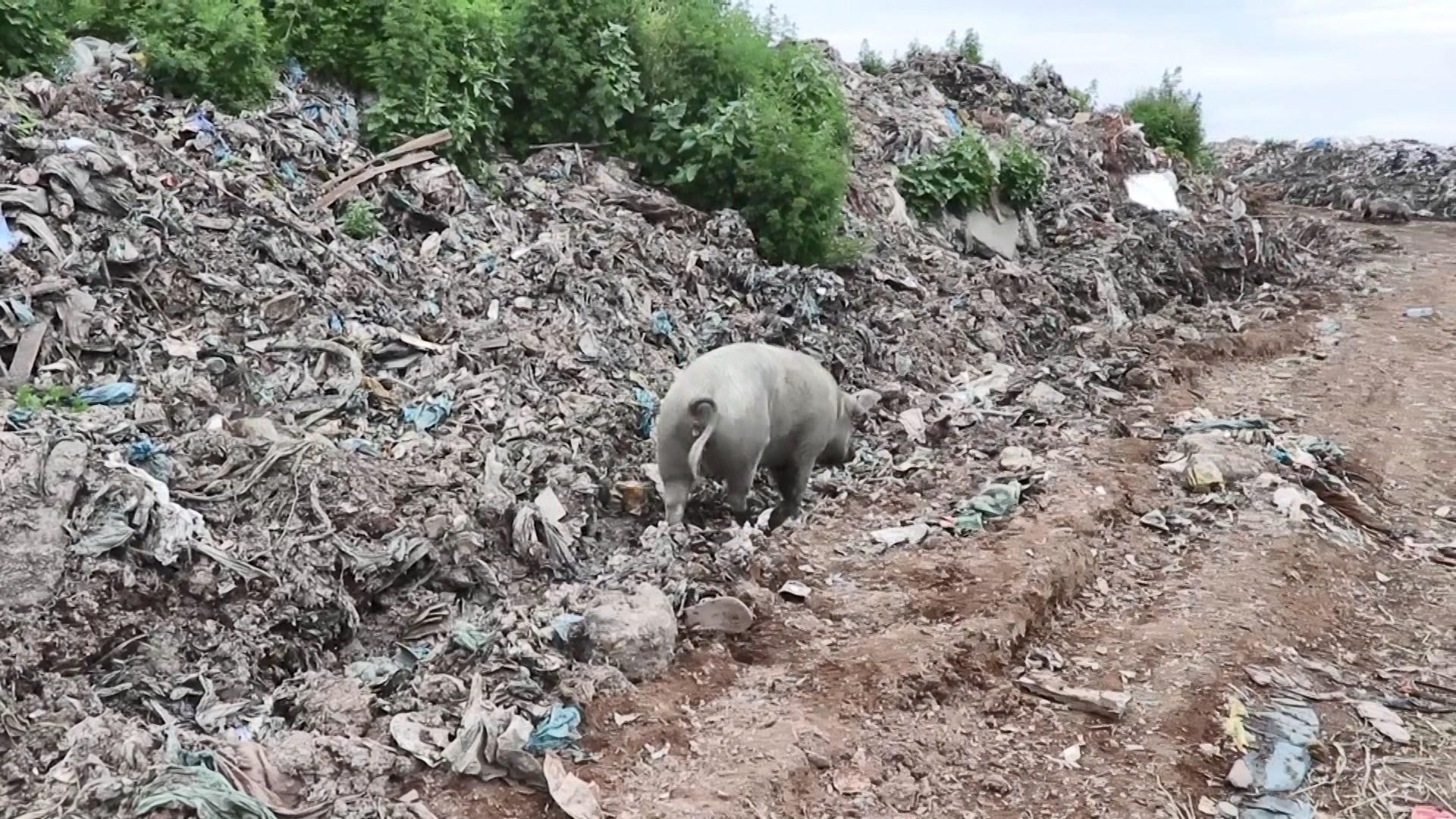 Erë e rëndë dhe shtim i mbetjeve në Porto Romano