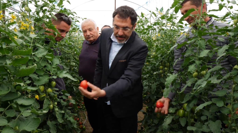 Prodhimet bujqësore vendase, Çuçi: 100% të sigurta, shkojnë në gjithë Evropën