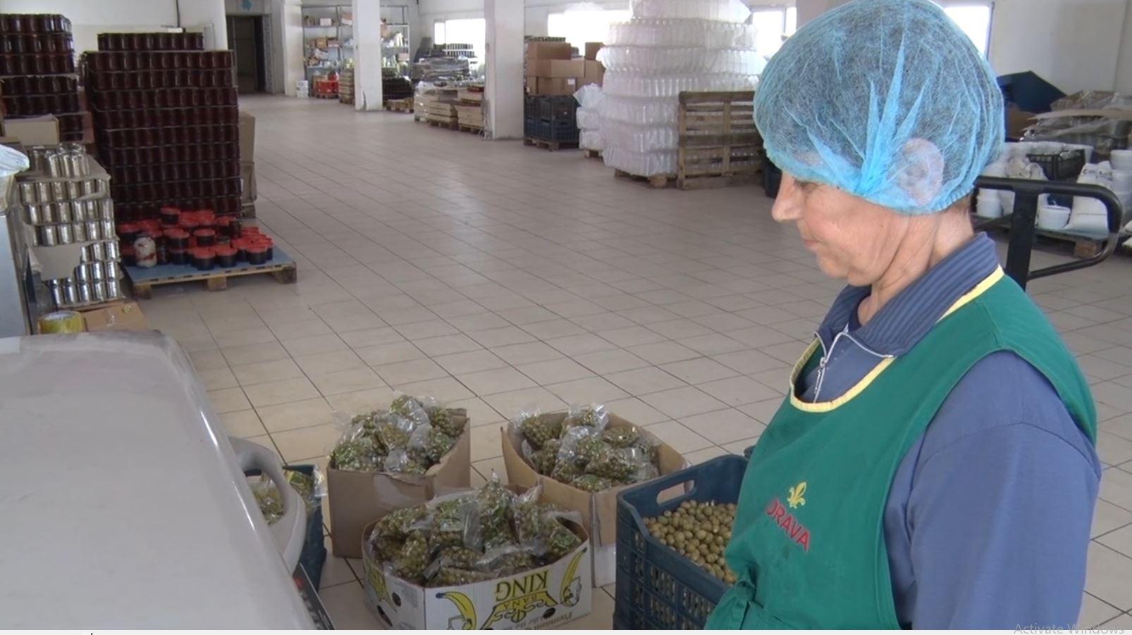 Gratë pa punë në Lushnje, bizneset i kërkojnë me kualifikim