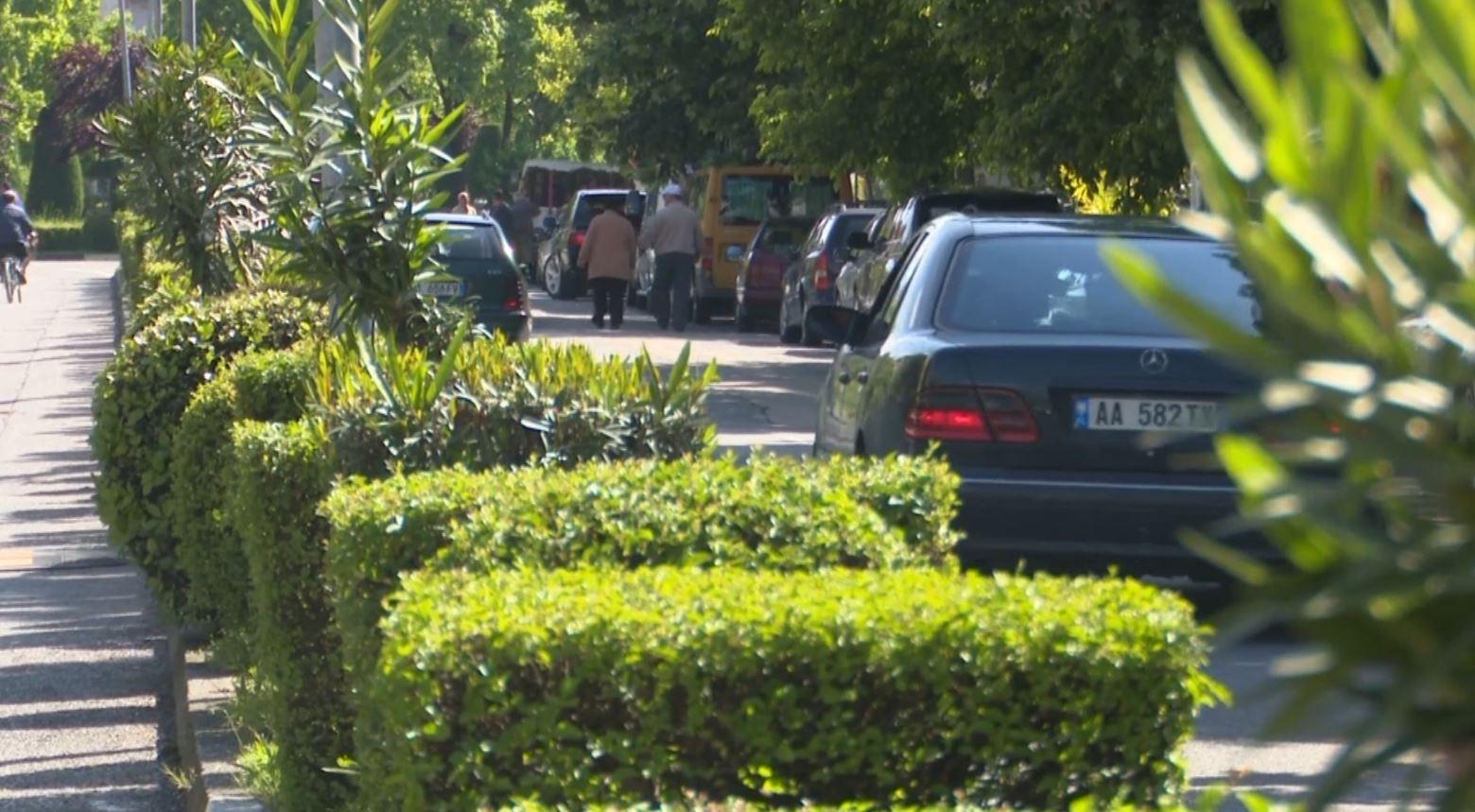 Kaos në rrugët e Shkodrës, problem pemët dekorative