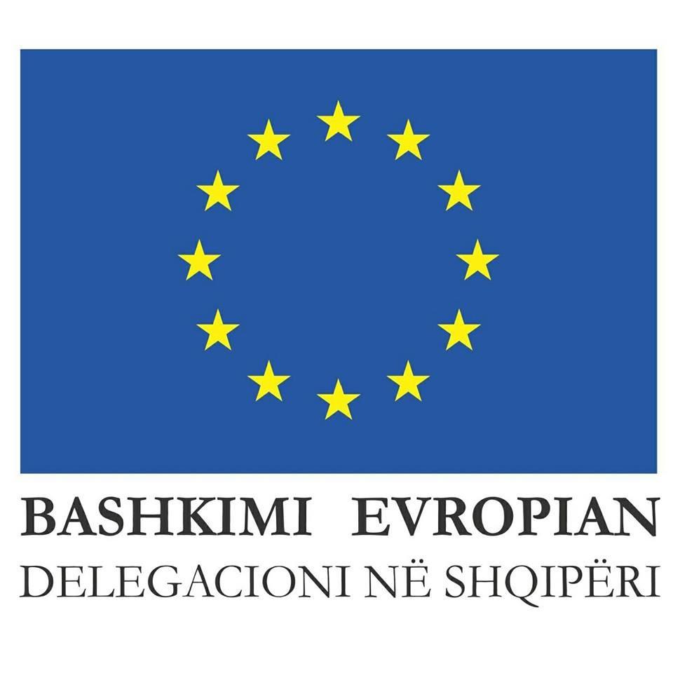 Delegacioni i BE deklaratë në prag të protestës së sotme