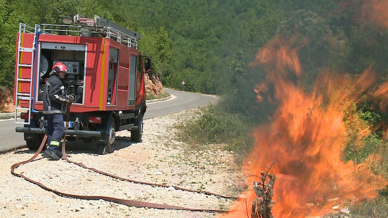 Zjarret e verës në pyje, një ditë në Dajt me skuadrën zjarrfikëse të Tiranës