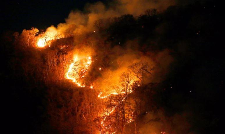 """""""Do bllokojmë marrëveshjen tregtare"""", zjarret në Amazonë shqetësojnë botën"""