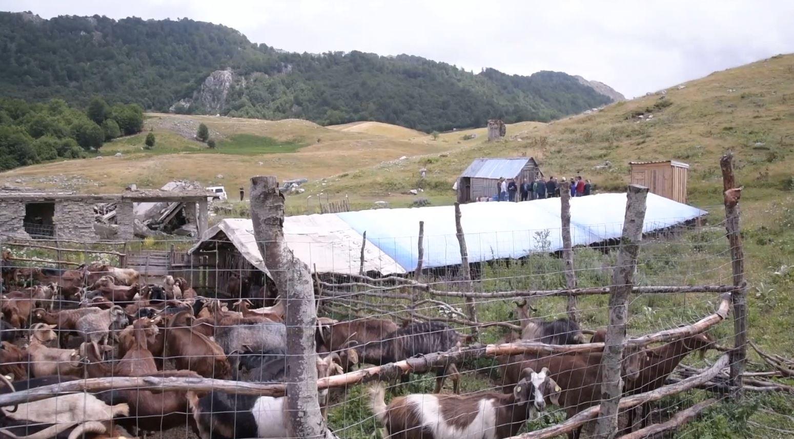 Çuçi vizitë në stanet e Shëngjergjit