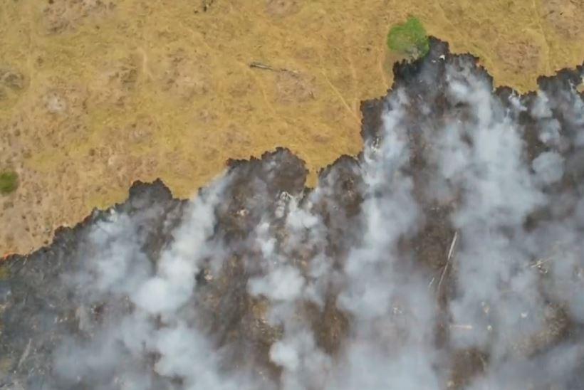 Zjarret në Amazonë, pas refuzimit të ndihmës publikohen pamjet satelitore