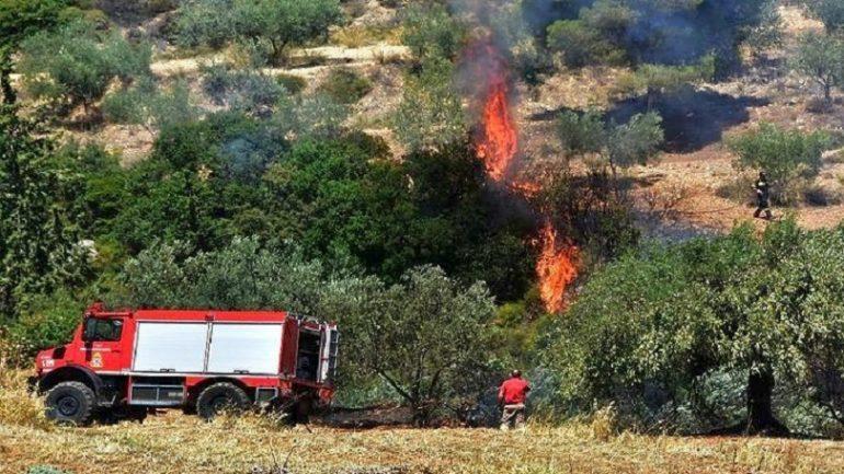 Zjarr në një pulari në Tiranë