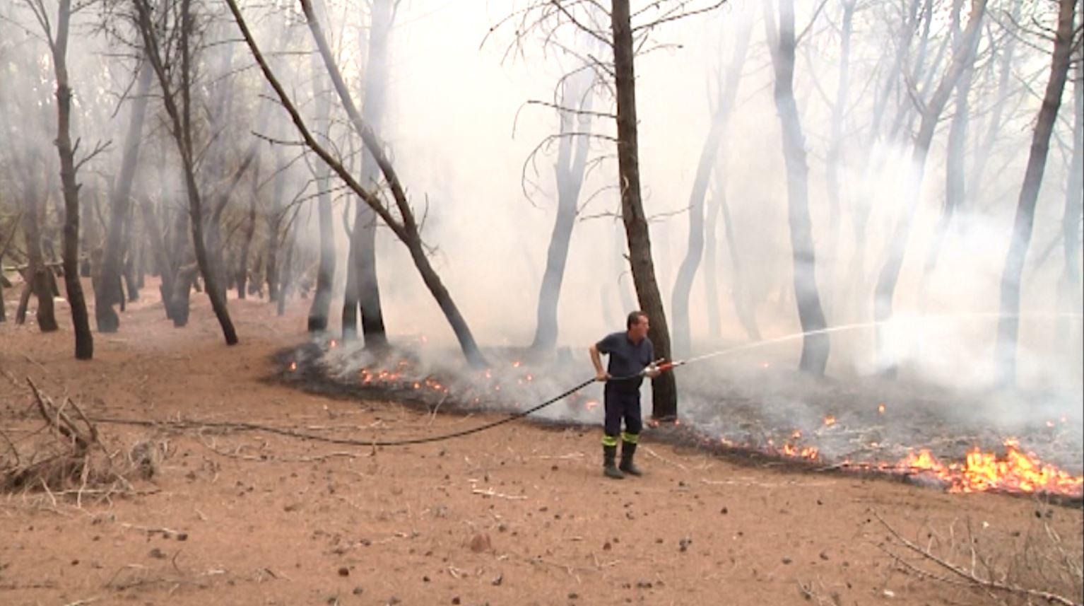 Zjarret në Vlorë, vetëm në pak ditë 35 vatra