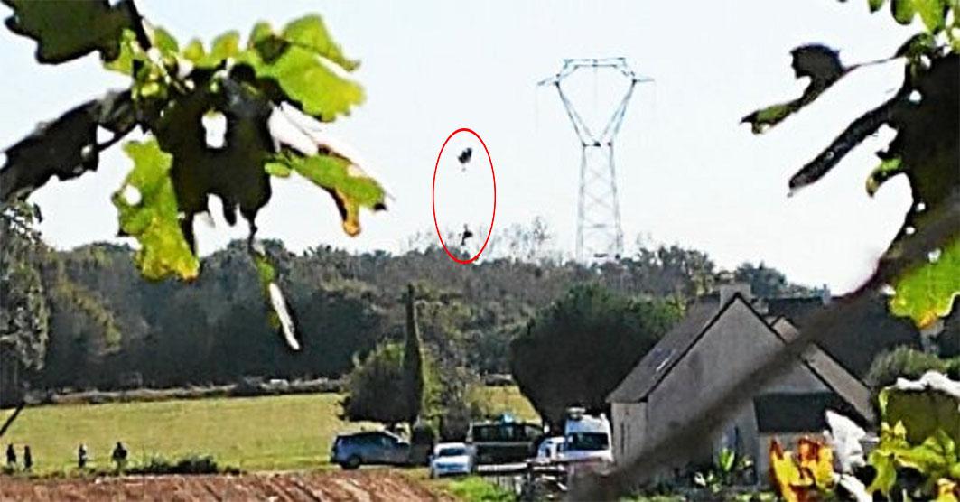 Rrëzohet avioni, piloti ngec te linja elektrike